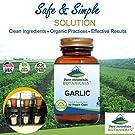 Garlic Pills - Kosher Vegan Capsules with 500mg Organic Garlic Allium Sativum Supplement #1