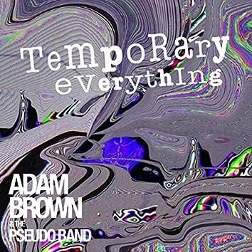 Temporary Everything