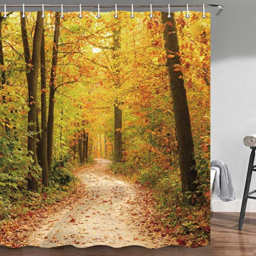 Fall Shower Curtain, Nature Autumn Forest Sunshine Romantic Fall Road in Park Autumn Forest Leaves Foliage Autumn Bathroom Accessories, Fabric Bathroom Decor Set with Hooks, 72X72Inches
