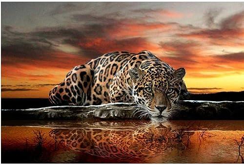 ahorra hasta un 30-50% de descuento XIGZI Plaza Llena 5D DIY Diamante Pintura Leopard Leopard Leopard Bordado de Punto de Cruz Mosaico Decoración para el hogar Sin Marco  alta calidad general