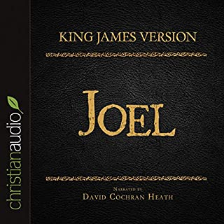 Holy Bible in Audio - King James Version: Joel cover art
