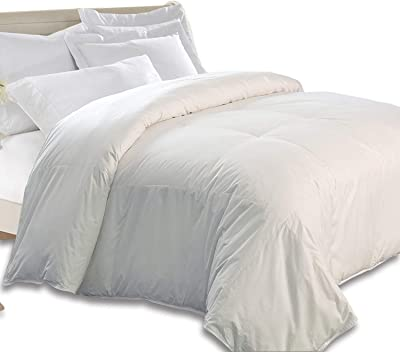 kathy ireland White 240 Thread Count Feather Comforter, Full-Queen