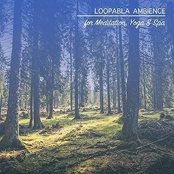 20 Loopable Ambience Noises for Meditation, Yoga & Spa