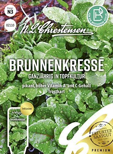Brunnenkresse Ganzjährig in Topfkultur, pikant, hoher Vitamin-A- und C-Gehalt, Samen