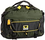 Mountainsmith lombaire recyclé Série Visite TLS R Backpack (Pinon vert)