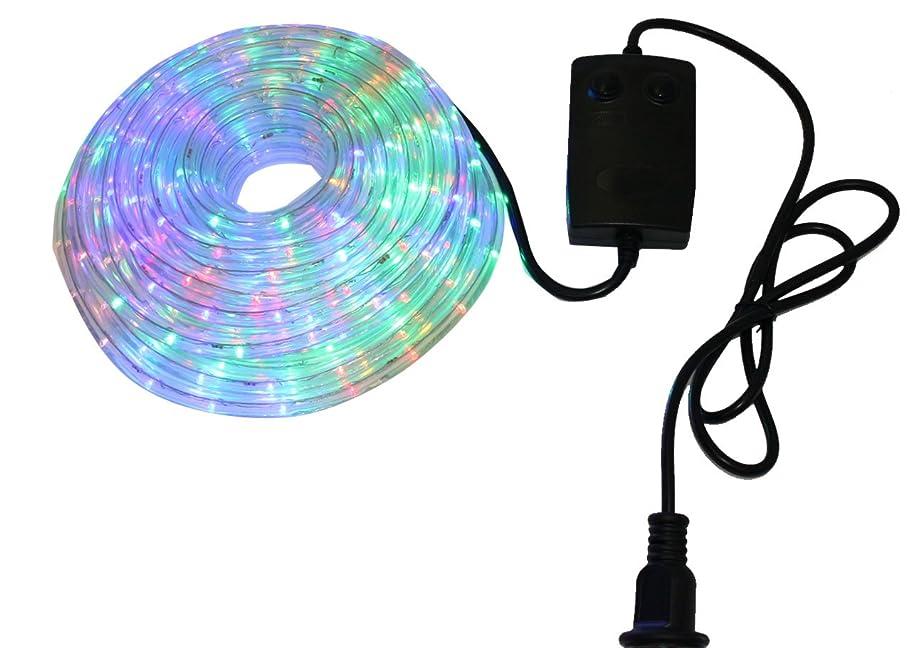 お世話になったマオリ欲しいですクリスマス イルミネーション 2芯 丸型 防水 ロープ ライト 300 LED / 10m ミックス 28種類 コントローラー セット