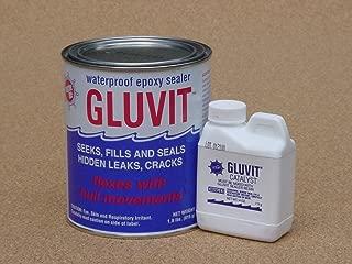 Gluvit Epoxy Waterproof Sealer