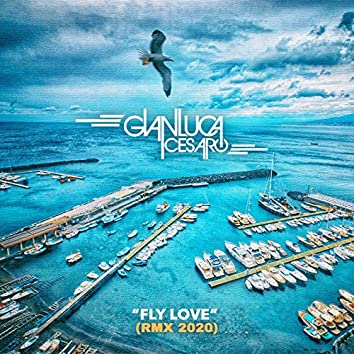 Fly Love (Remix 2020)