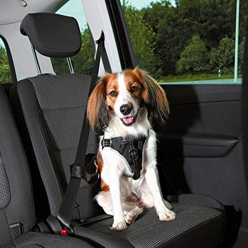 Trixie, Auto-Geschirr Dog Protect schwarz S-M