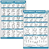 QuickFit 2 Pack - Bodyweight Workout Exercise Poster Set - Volume 1 & 2 - Laminated Body Weight Exercise Chart - 18' x 27'