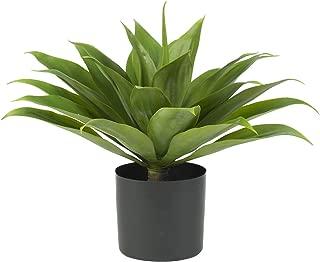 Best large faux agave plants Reviews