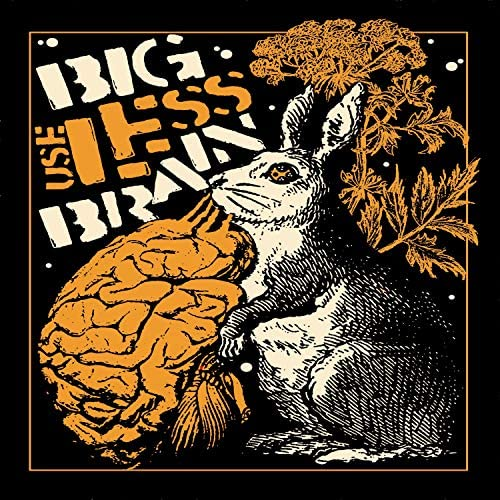 Big Useless Brain