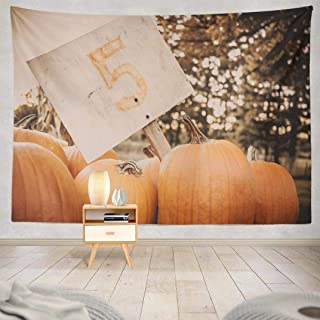 ONELZ Pumpkins Tapestry, Wall Hanging Tapestry, Pumpkins Agriculture Autumn Colorful Decoration Fall Farm Decor Collection Bedroom Living Room 60 L x 80 W Polyester Pumpkins