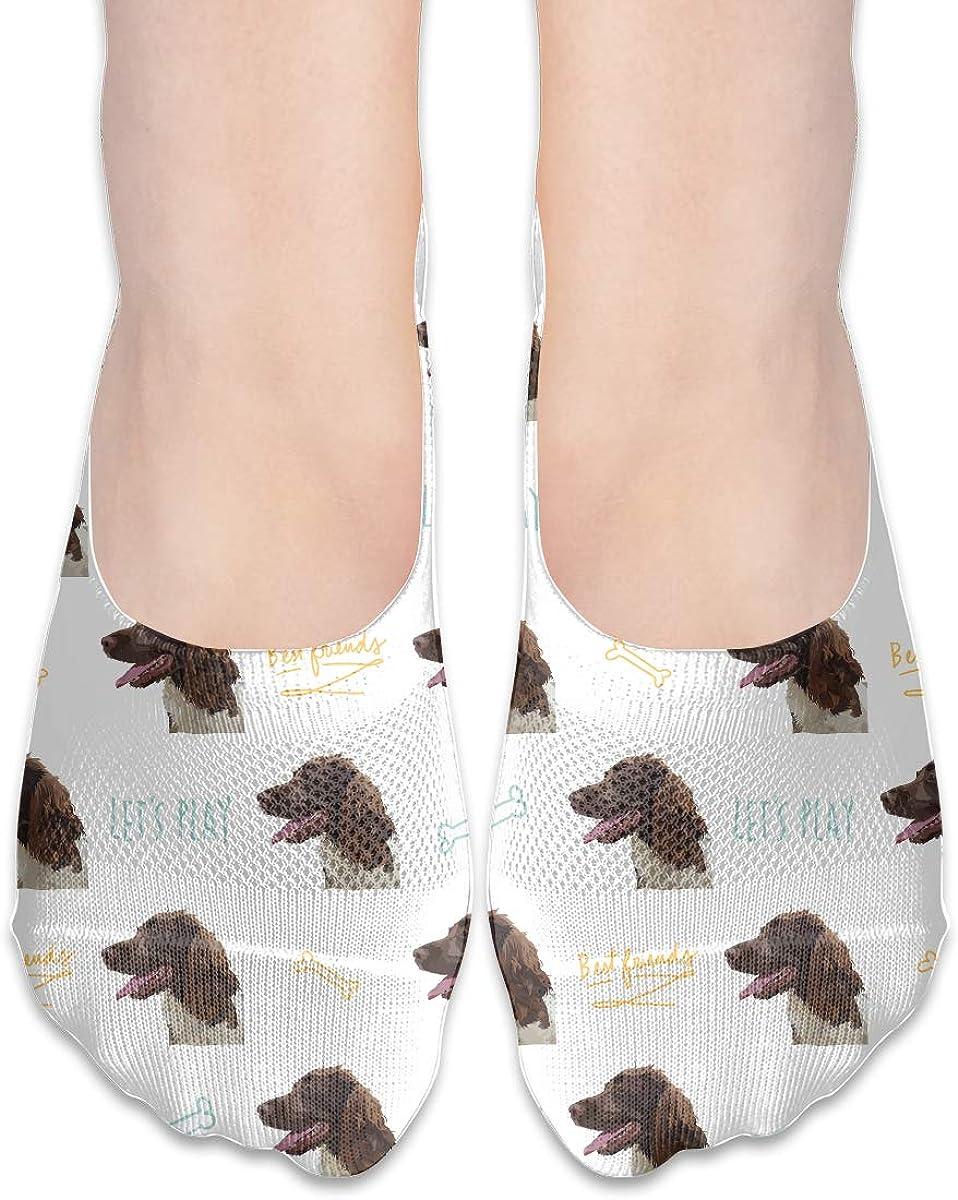 Casual Springer Spaniel Socks, No Show Socks For Women Men