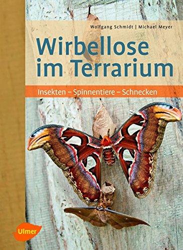 Wirbellose im Terrarium: Insekten - Spinnentiere - Schnecken