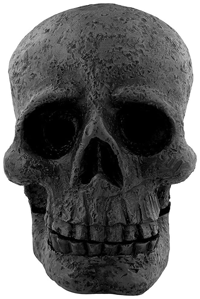 作詞家落ち着いてオッズAttitude Clothing Skull Incense Cone Holder