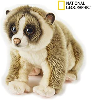 National Geographic Sunda Slow Loris Plush