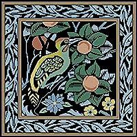 クロスステッチ大人、初心者11ctプレプリントパターン鳥の花40x50cm -DIYスタンプ済み刺繍ツールキットホームの装飾手芸い贈り物40x50cm(フレームがない )