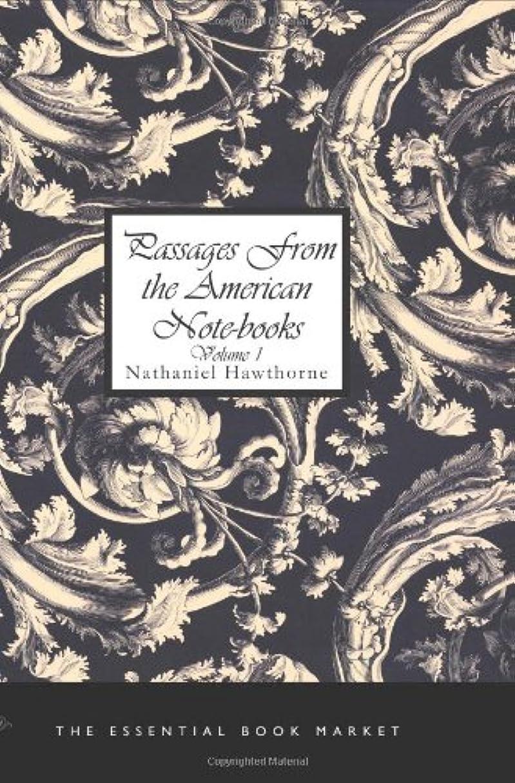 抽象化抽出意志Passages from the American Notebooks