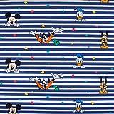 SCHÖNER LEBEN. Baumwolljersey Digitaldruck Disney Micky