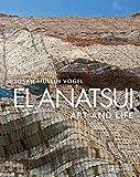 El Anatsui Art and Life