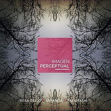Imagen Perceptual