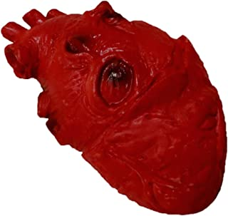 Novelty Giant Life Size Foam Heart Gory Halloween Prop