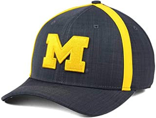 brand new 9e7f2 cda25 Nike Air Jordan Aerobill Dri Fit Michigan Wolverines Coaches Adjustable Cap  Hat