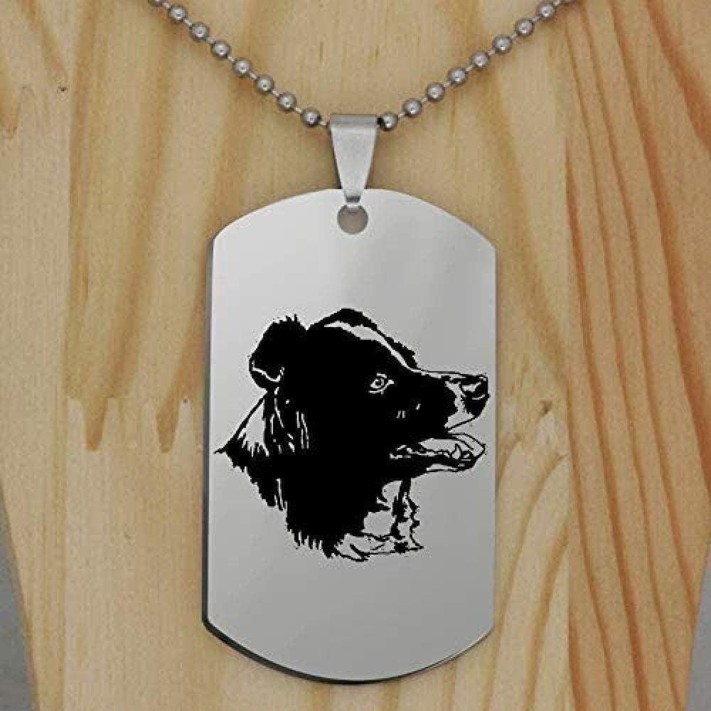 Aluyouqi Co.,ltd Collar de Acero Inoxidable, Collar con Colgante de Perro Border Collie, Collar de Animales, joyería para Mascotas para Mujeres, Regalo, envío Directo para Mujeres, Hombres, Regalos