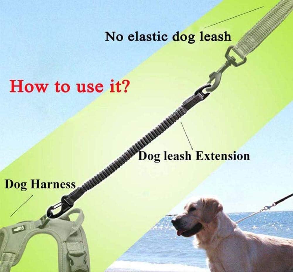 Hunde F/ührt Seil /Kurze Bungee Hundeleine F/ür Hunde Nylon Leine Einziehbare Verl/ängerung Im Elastischen Bungee Buffer Hund Laufen Lauftraining