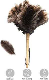 ostrich down feather duster