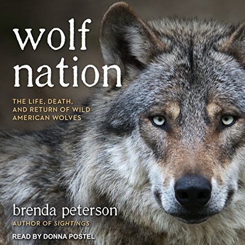 Wolf Nation Audiobook By Brenda Peterson cover art