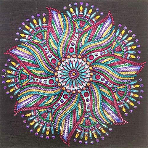 Koehope Kleurrijke bloem 5D Special Shaped diamant schilderset borduurwerk hand strass kristal kruissteek kit DIY schilderij voor woonkamer slaapkamer wanddecoratie