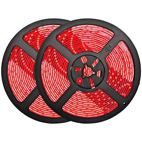 luz roja fabricante Bluex Bulbs