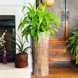 Country Corner Vintage Plant and Fern Stand. Unique Indoor Stump Planter and Flower Pot. Tall Rustic Indoor Cement Resin Flowerpot.
