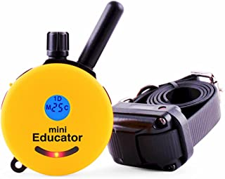 Best Educator E-Collar Remote Dog Training Collar Reviews