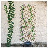 Mauer vergrößert Zaun Baum Garten verstellbar schrumpfbar Floral Hindernis Frame Rechteck Frame Wohnzimmer Patio vergrößert Spalier Kletterpflanze (außer hängende Ornamente),Carbonizedcolor,100*40cm