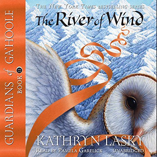 The River of Wind cover art