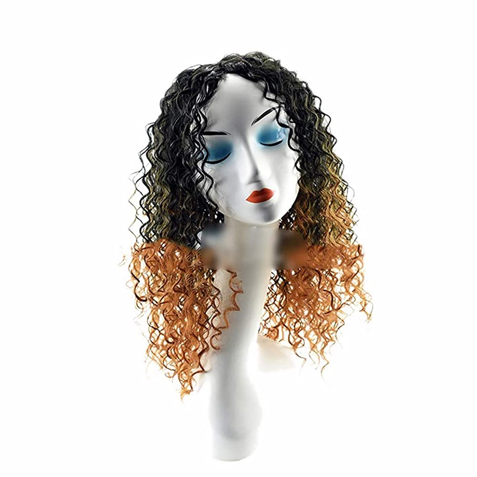 君主ストライク痛いYrattary 女性のための無料キャップ付き人工毛髪黒グラデーションブラウンショートカーリーヘアーウィッグウィッグかつら (Color : ブラウン)