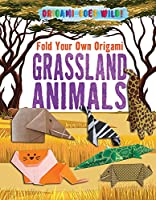 Fold Your Own Origami Grassland Animals (Origami Goes Wild!)