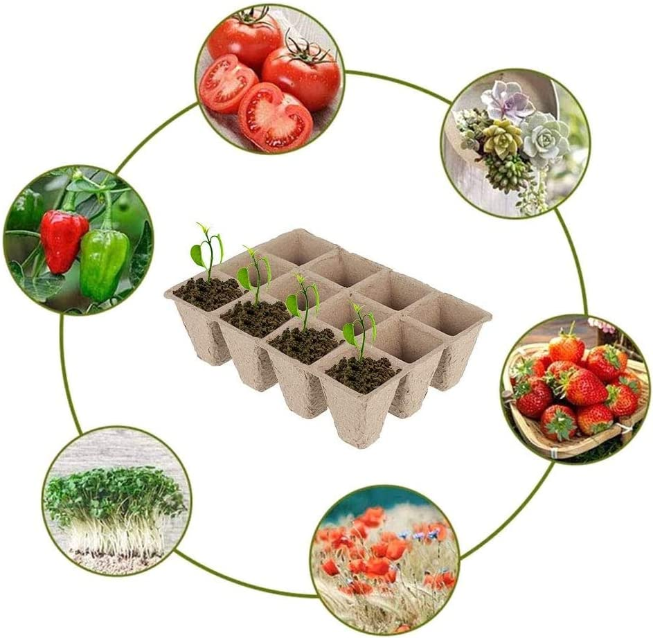 Vegetable Patches Chilits 12 Pcs Peat Pots Seed Starter Trays Biodegradable Seedling Starter Trays with 12 Pcs Plant Labels for Gardens Fruit Nurseries and Greenhouses