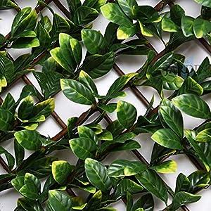 CELOSIA JARDIN de mimbre con hojas de laurel, 1 x 2 metros