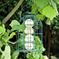 Kingfisher Green Powder Coated Squirrel Guard Feeder for Fat Balls, Wild Garden Bird Fat Ball Cage by Happy Beaks from Happy Beaks