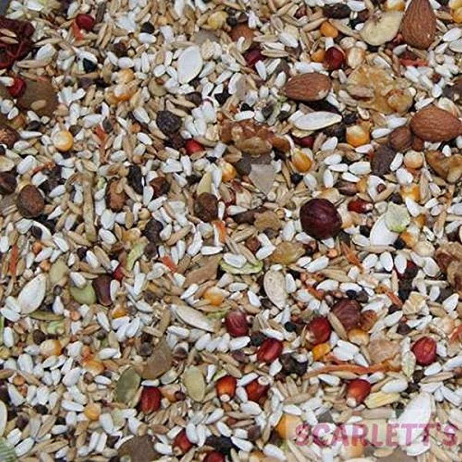 Avian Specific AS30 No Peanut No Sunflower Seed 15kg