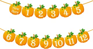 Pumpkin 1st Birthday Photo Banner Newborn to 12 Month Display Milestone Pumpkin Theme First Year Baby Banner Fall Party Photo Booth Props Cake Smash Party Decorations Supplies