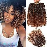 6 Bundles 8Inches Short Passion Twist Hair Marlybob Crochet Hair Jerry Curl Crochet Braiding Hair Afro Kinky Curly Crochet Hair Short Crochet Braids Hair Curly Crochet Hair For Black Woman (T1B/30)