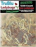 TruBlu Supply 1500+ Live Ladybugs Lady Beetles Ladybirds - Beneficial Garden Bugs - Fresh Caught