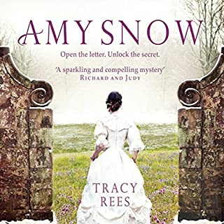 Amy Snow audiobook cover art