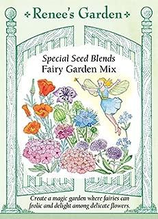 Best fairy garden seed mix Reviews