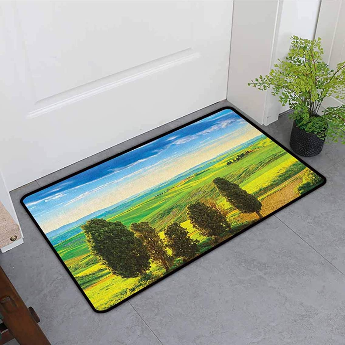 ONECUTE Custom Doormat,Nature Rural Sunset in Italy Countryside with Trees Fresh Meadows and Clear Sky Image Print,Anti-Slip Doormat Footpad Machine Washable,31